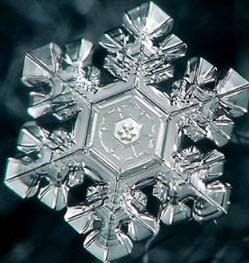 МАСАРУ ЭМОТО: Кристалл чистой воды