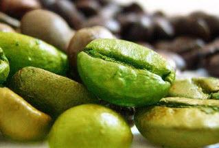 Зеленое кофе для эффективного похудения